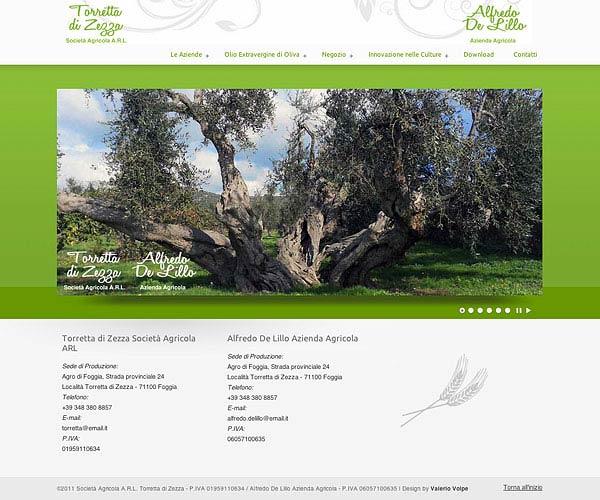 Torretta di Zezza – Sito web